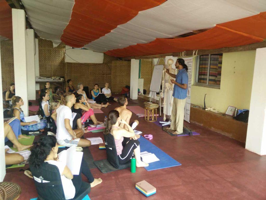 Yoga Anatomy Training Course in India | Learn Yoga Anatomy in Goa